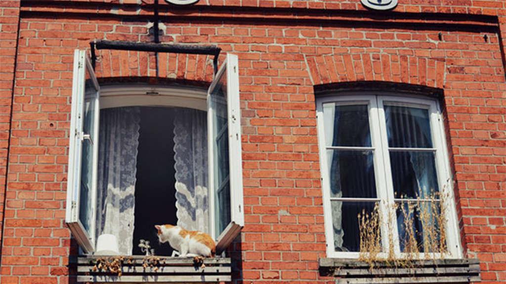 Fenster auf oder zu? Die richtige Temperatur ist wichtig für guten ...