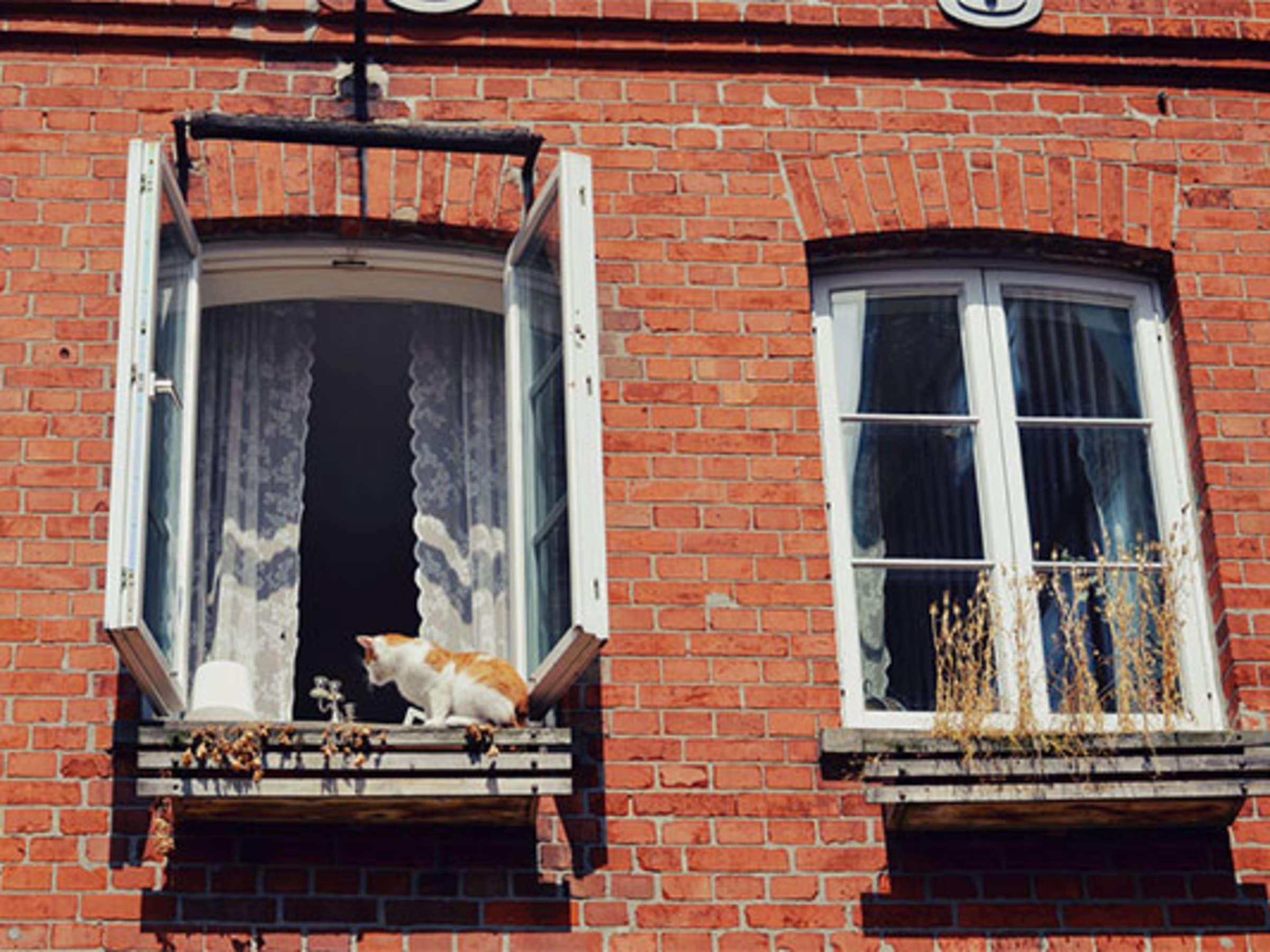 Fenster Auf Oder Zu Die Richtige Temperatur Ist Wichtig Fur Guten Schlaf Leben