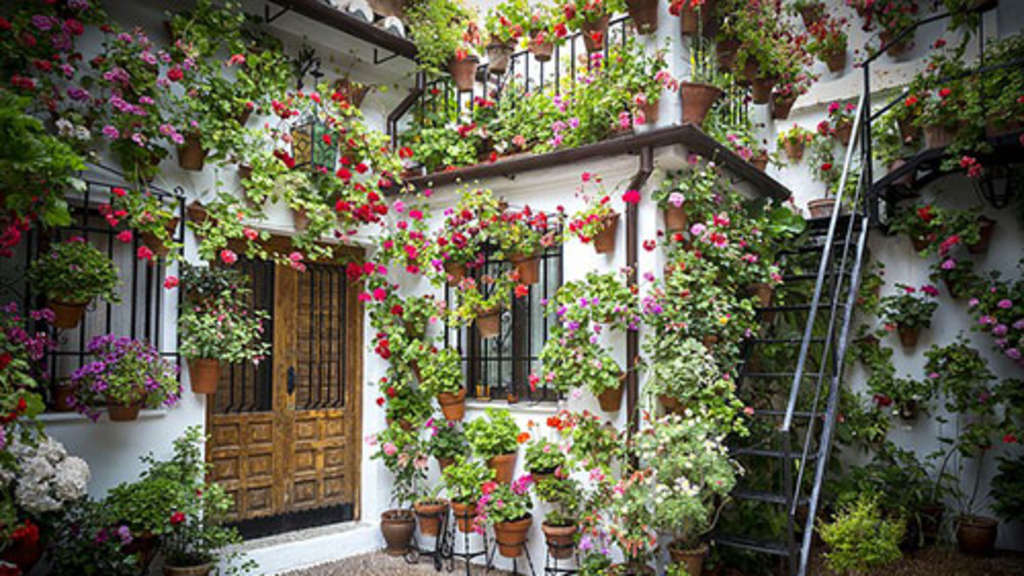 Die Terrasse mit wenig Aufwand als Blickfang im Garten gestalten | Leben