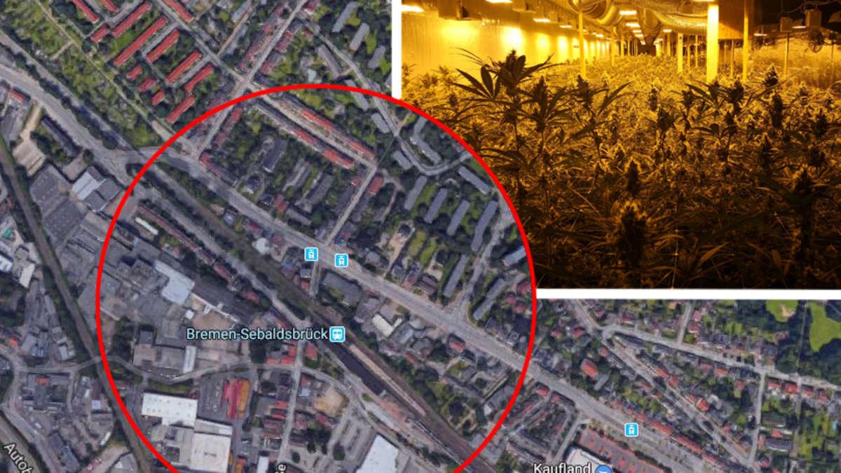 bremen komischer geruch dringt aus bunker polizei macht mega drogen fund deutschland welt. Black Bedroom Furniture Sets. Home Design Ideas